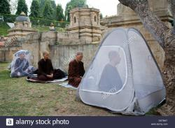 Meditation Park Bodhgaya | Buddhists monks sitting in meditation some protecting with ...