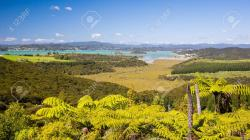 Mt. Bledisloe Northland and the Bay of Islands | View From Mount Bledisloe Lookout, Waitangi, Bay Of Islands ...