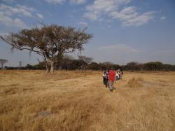 Mukuvisi Woodlands Environmental Centre Harare | International Convention of Jehovah's Witnesses | Trip Accomplice