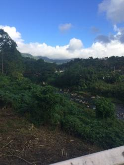 Museo Cemí  The North Coast and the Cordillera Central | 12 best Jayuya, Puerto Rico... images on Pinterest | Ancestry and ...