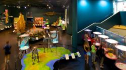 Museum & Art Gallery of the Northern Territory Darwin | Museum and Art Gallery of the Northern Territory Pictures: View ...