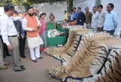 National Zoological Park Delhi | Delhi News Agency (DNA) – Illegal Wildlife Products incinerated at ...