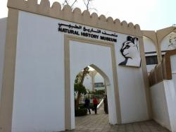 Natural History Museum Muscat   My Travelogues: A Weekend 'Whale'-Spent at the Natural History ...