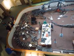 Oxon Cove Park Prince George's County   Mid-Mesozoic Field Conference, Day 7: Price and the San Rafael ...