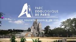 Pinacothèque de Paris Paris | Parc Zoologique de Paris - YouTube