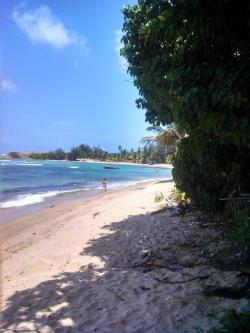 Playa Los Tubos The North Coast and the Cordillera Central | 101 best Playas de Puerto Rico images on Pinterest | Beaches ...
