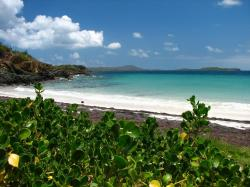 Playa Escondida Vieques | ZeePuertoRico.com - Escondida Beach of Vieques