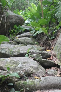 Pueblito Parque Nacional Natural Tayrona | The road to Pueblito ruins in the Tayrona National Park (Santa ...