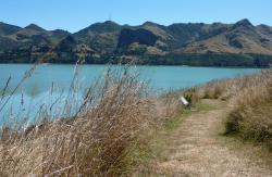 Quail Island Christchurch and Canterbury | Ōtamahua/Quail Island Recreation Reserve: Places to visit in ...