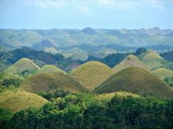 Rice Museum Chocolate Hills | 25+ unique Chocolate hills ideas on Pinterest | Bohol philippines ...