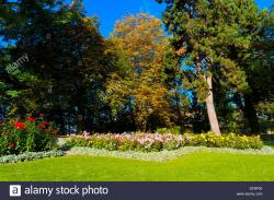 Rosengarten Bern | The Rose Garden Rosengarten, Bern, Canton Bern, Switzerland Stock ...