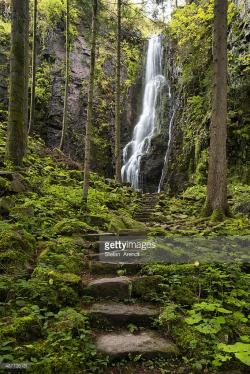 Schapbach The Black Forest | Waterfall In The Forest Burgbach Waterfall Near Schapbach Black ...