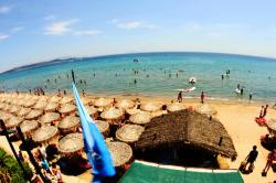 Schinias Beach Attica and Delphi | Athens Airport (ATH) transfers to/from Schinias Beach with taxi ...