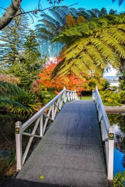 Broadgreen Upper South Island and the West Coast | 23 best Nelson/Tasmin images on Pinterest | Nelson new zealand ...