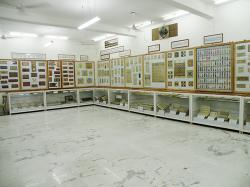 Shree Sanjay Sharma Museum Jaipur | Shree Sanjay Sharma Museum & Research Institute | Museums of India
