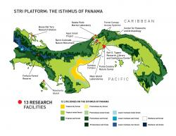 Smithsonian Tropical Research Institute The Canal and Central Panama | NEO - Tropical Environment Desarrollando ConCIENCIA: Of the ...