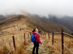 Sobaeksan National Park Sobaeksan National Park | The Stairmaster: Lost in the Clouds of Sobaeksan National Park ...