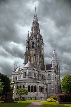 St Fin Barre's Cathedral Cork City | Saint Fin Barre's Cathedral, City of Cork, Ireland - The Irish Rose