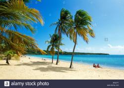 Sun Bay Vieques | Sun Bay Beach on Vieques Island Puerto Rico Caribbean Stock Photo ...