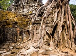 Ta Som Temples of Angkor | A Lightweight's Guide to the Temples of Angkor