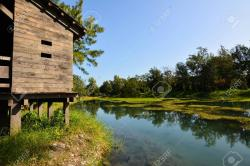 Taitung Forest Park Taitung | Pipa Lake At Taitung Forest Park, Taiwan, Asia Stock Photo ...