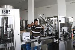 Taybeh Winery Taybeh | Taybeh, West Bank - Beer, Wine Flow In West Bank Christian Hamlet