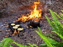The Natural Flames Experience Upper South Island and the West Coast | Natural Flames Experience | Walking tracks and tours in Murchison ...