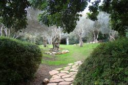 Tisch Family Zoological Gardens Jerusalem | Panoramio - Photo of Israel. Jerusalem. The Tisch Family ...