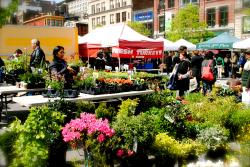 Victorian Flatbush House Tour New York City | A day in the Union Square Greenmarket | #thesetrendingtopics