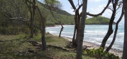 Wallings Dam & Reservoir Fig Tree Drive | Wallings Dam to Rendez-vous Bay and Falmouth - Antigua Outdoors