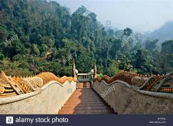 Wat Tham Pha Plong Chiang Dao | Stairway to the jungle, Wat Tham Pha Plong, Chiang Dao, Thailand ...