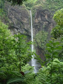 Waterfall Ra'iatea & Taha'a | Blog Home Archives - Friendly Cruises Blog