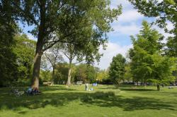 Westerpark Amsterdam | You're invited! Vegan Get Together Westerpark, 13th of June ...