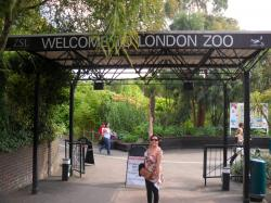 ZSL London Zoo London | ZSL London Zoo - Backpacks and Bunkbeds