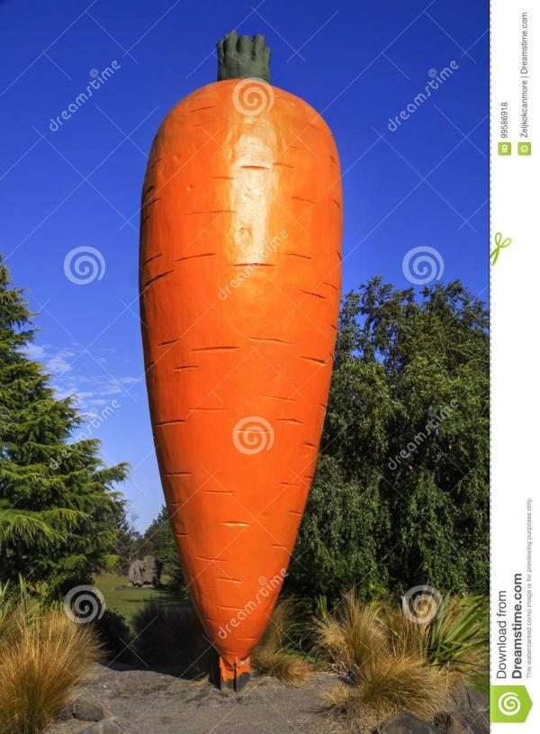 Big Carrot Ohakune