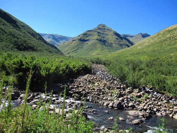 Bokong Nature Reserve Central Highlands