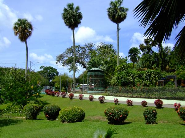 Botanical Gardens Port of Spain