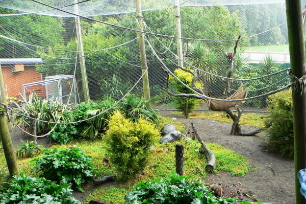 Brooklands Zoo New Plymouth
