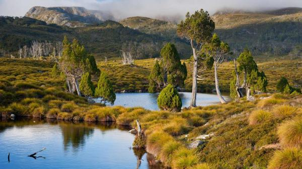 Cradle Mountain – Lake St Clair National Park Cradle Mountain-Lake St Clair National Park