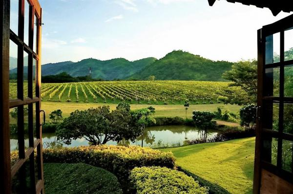 PB Valley Khao Yai Winery Khao Yai National Park