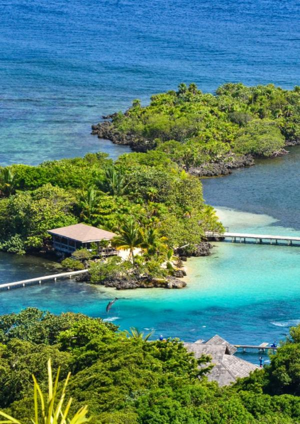 Roatán Institute for Marine Sciences Roatan and the Bay Islands