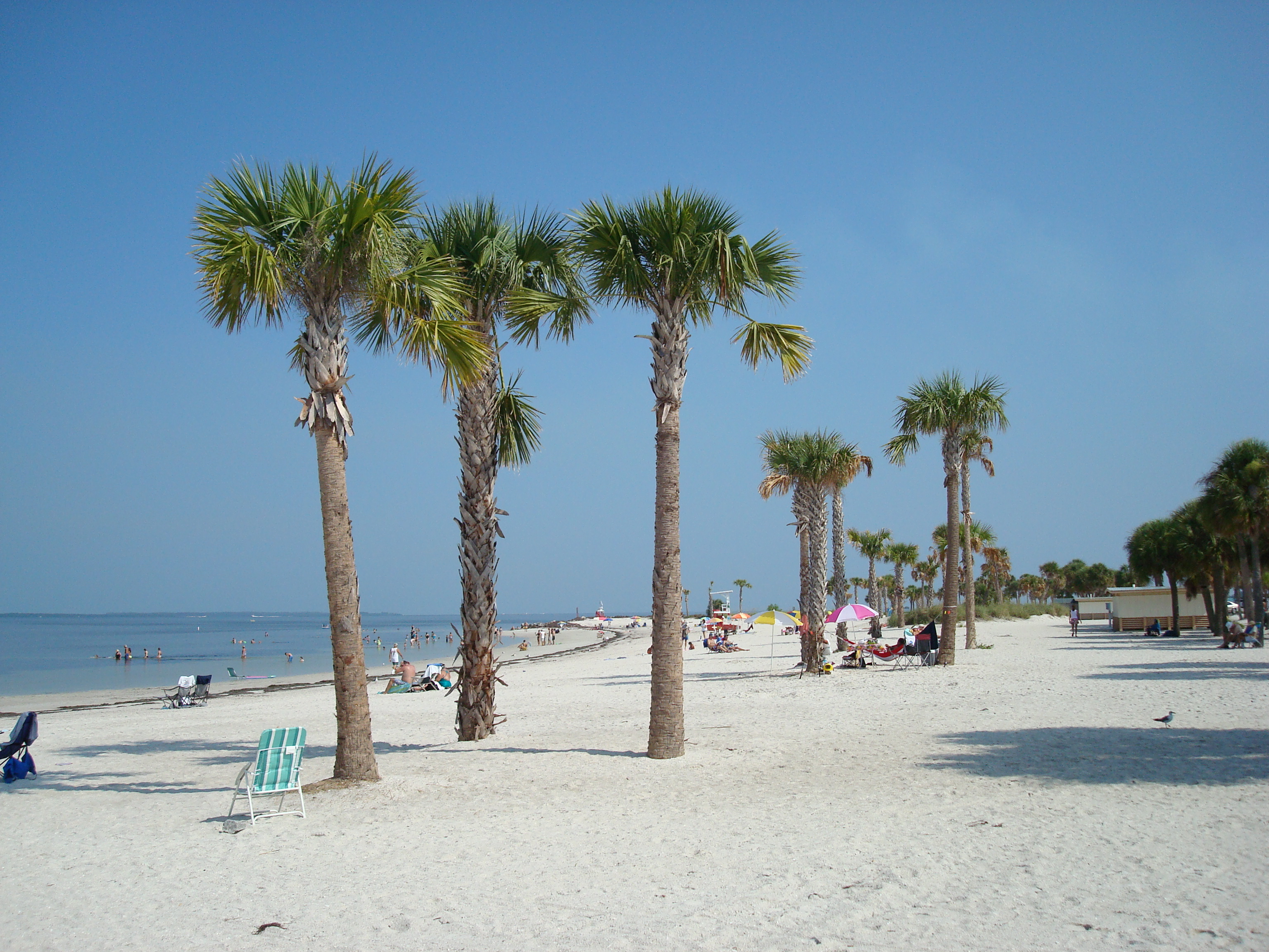 View Madeira Beach The Tampa Bay Area Howard Park Island Paradise Cottages Apartments